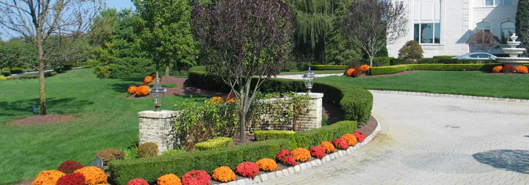 Welcome To Best Horticultural Services   Best Horticultural ...